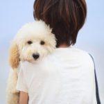 Если завести собаку, станет ли ребенок аккуратнее?