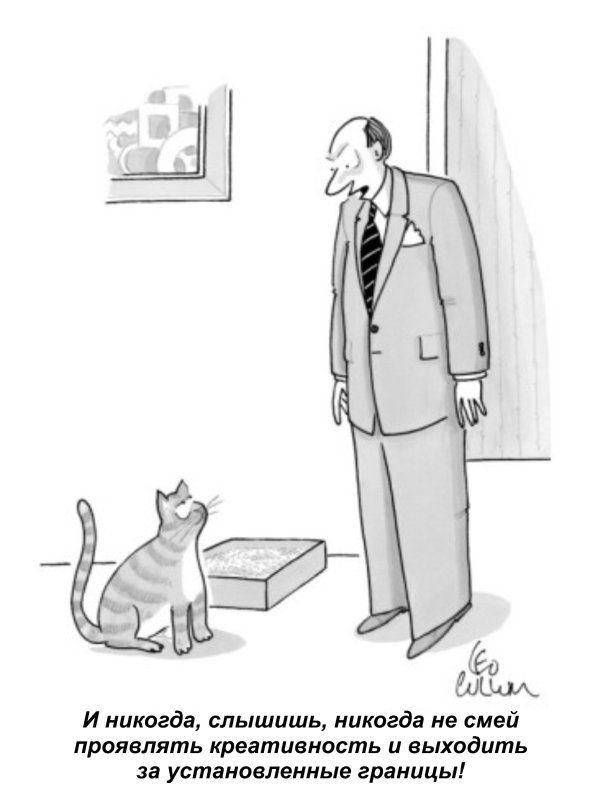 Установление границ коту