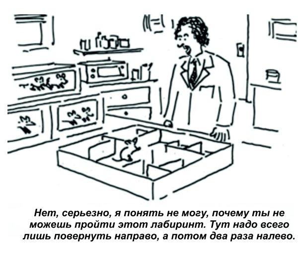 Экспериментальная психология не для всех