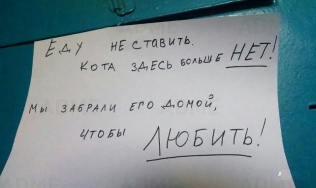 kota-zdes-bolshe-net
