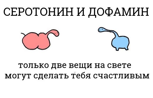 serotonin-i-dofamin
