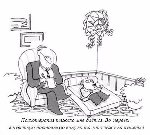 dog-psychoterapy
