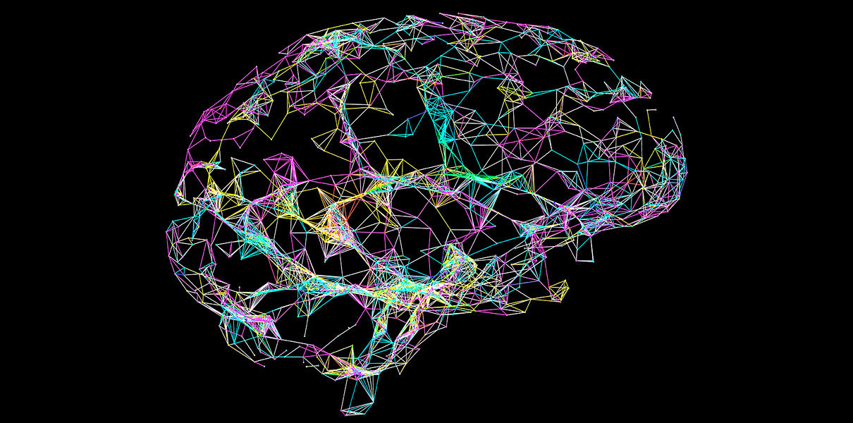 novye-svyazi-v-mozge-1