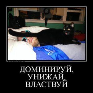 unijaj_vlastvuj